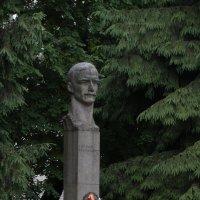 Виктору Кингисеппу :: Михаил Жуковский
