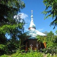 За оградой, Николо-Арсениевский кладбищенский храм :: veera (veerra)