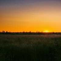 Летний закат :: Алёнка Шапран
