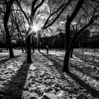 Старая площадь.... :: Юрий Яньков