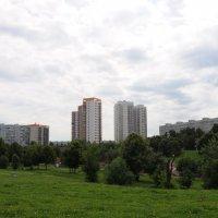 Небо над Чертаново. :: Ирина Лебедева