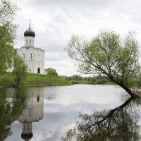 Церковь Покрова на Нерли :: Игорь Винокуров