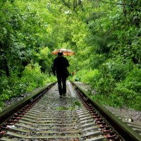 Прогулки под дождем :: Максим Чернов