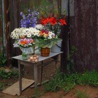 Купите цветы! Что, и яиц не хотите? :: Андрей Лукьянов