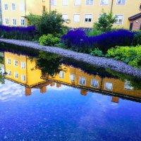 Голубое утро июля :: liudmila drake