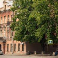 Питер улочки Петроградского района :: Юрий Плеханов