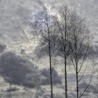 Весна на вятке :: Василий Ахатов
