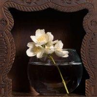 Цветочек в воде (в стекле (в дереве)) :: Константин Косов