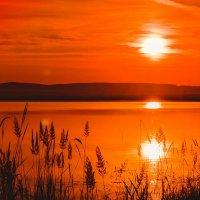 Озеро Учум-2 :: Роман