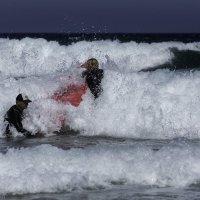 first lesson of surf :: Gotardo Ro