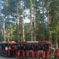 Эстония 15-07-2017 :: imants_leopolds žīgurs