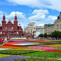 Цветочный ковёр на Красной площади :: Анатолий Колосов