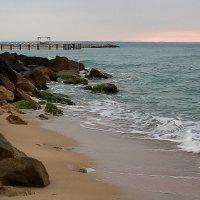 Утро на море :: Екатерррина Полунина