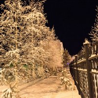 После мороза :: Sadi Omarov