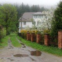 Весна в Карпатах :: Роман Савоцкий