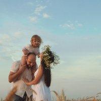 Семейная фотосессия в пшеничном поле :: Марина Кайстрова