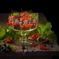 Красная смородина :: Evgeniy Belkov