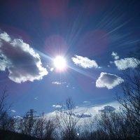 Солнце :: Людмила Жердева