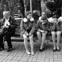 Бабушка и школьницы :: Сергей Веснин