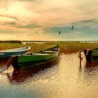 О том, как я на лодке не катался... :: Владимир Голиков