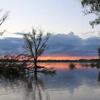На закате :: галина северинова