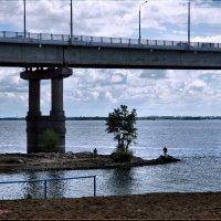 Под животом моста... :: Anatol Livtsov