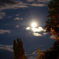 И ночь так упоительна напоена всем ароматом лета уходящего.. :: Андрей Заломленков