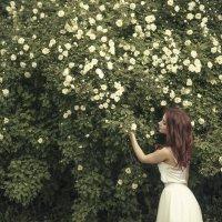 Аня в розах :: Женя Рыжов