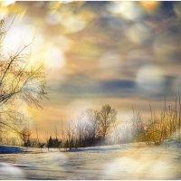 Морозное утро. :: Юрий Фёдоров