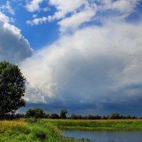 Вспоминая грозовой июнь... :: Лесо-Вед (Баранов)