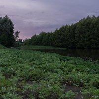 Вечер на р.Кондурча. :: Сергей Исаенко
