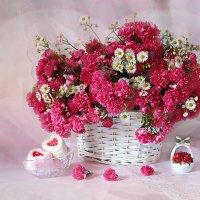 Розовая рапсодия. :: alfina