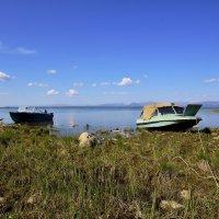 На озере Лама. Таймыр. :: Витас Бенета