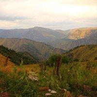 Вид на плато Шаджатмаз и долину реки Хасаут :: Vladimir 070549