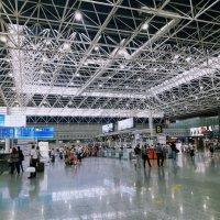 Международный аэропорт Сочи :: Tata Wolf