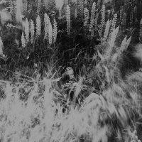 infinity :: ufoto16©photography ufoto16©photography