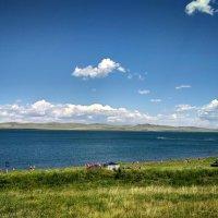 Картина озера Шира :: Елена Брыкова
