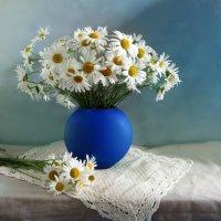 Ромашки, ромашки, ромашки цветы... :: SaGa