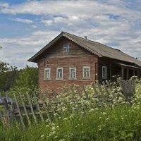 Дом в деревне Андозеро. :: Марина Никулина