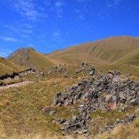 Северный склон Эльбруса. Джилы Су. Тропа к поляне Эммануэля. Высота около 2300 м :: Vladimir 070549