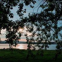 Солнце, берег, ветки) :: AlerT-STM 1