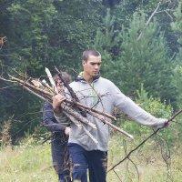 за дровами... :: Юлия Маркелова