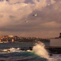 Утро в Севастопольской бухте :: Виктор Мороз