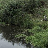 Рыбак на Рессете :: Яков Реймер