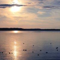 Закат на Чудском озере :: Ксения Трифонова
