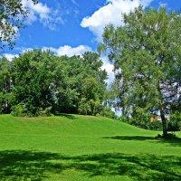 """Кругом пестреет мир зеленый, Березы белые шумят..."" :: Galina Dzubina"