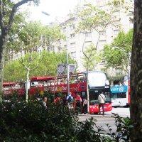 Барселона. Экскурсионный автобус :: татьяна