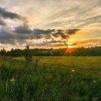 закат в поле :: cfysx