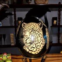 Резьба по Страусинному Яйцу :: Alexander Dementev