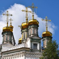 Купола Троицкого собора. :: Наталья